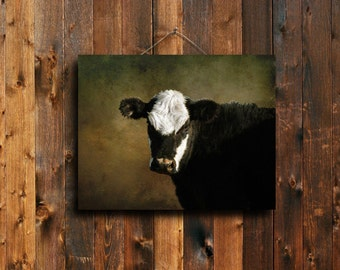 Cow - Cow decor - Cow photography - Cow canvas - Cow art - Country decor - Country art - Farm decor - Farm art - Canvas