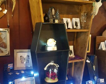 Small Coffin Shaped Gothic Curio cabinet display shelves