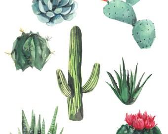 Succulents watercolor print, Succulent watercolor painting, Succulent art painting, Succulent art print, Succulent art, Succulent print