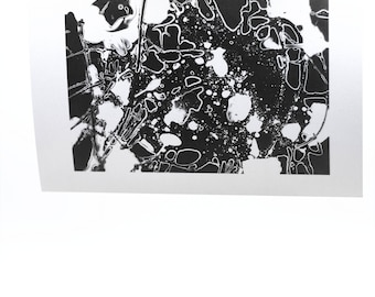 "Photogram-""Liquid II"""