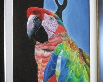 Parrot Acrylic Painting
