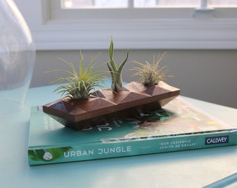 Air Plant Holder, Centerpiece, Solid Wood