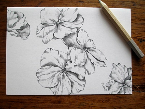 Items similar to blank greeting cards stationary black and white flower note cards art print stationery botanical floral pencil drawings on etsy