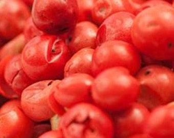 Pink Peppercorns - Certified Organic