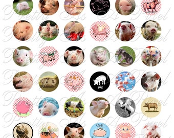 Pigs - One Inch Circles - 1 x 1 inch - INSTANT DOWNLOAD - Digital Collage Sheet