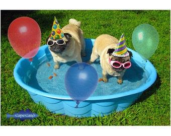 Pug Pool Party Birthday Card