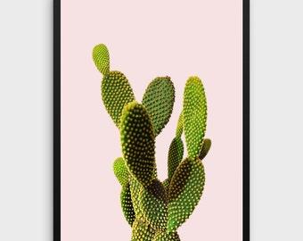 Cactus Art | Cacti Print, Cactus Poster, Cactus Photography, Cactus Wall Art, Cactus Print, Succulent Print, Cactus Decor, Cactus Printable