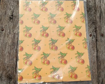"""Vintage Gift Wrap All Occasion Apples on Peach Background (2) 24"""" x 30"""" Sheets and 2 Cards © 1982 Current SO CUTE"""