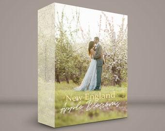 Gorgeous New England APPLE BLOSSOMS Digital Backdrop