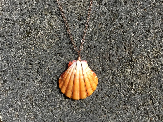 Hawaiian Sunrise Shell, Fire Red-Orange, Pink Tourmaline Gemstone, 14k Rose Gold Filled Chain Necklace