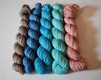 Beach Walk - Mini Skeins - Mini Skein Set - Set of 5 - Indie Dyed Yarn - Hand Dyed Yarn - DK Yarn - DK Minis
