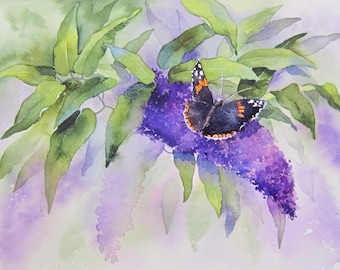 Butterfly and Buddleia painting project