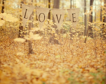 """Autumn Forest, Rustic Fall Decor, Autumn Art, Fall Photography, Bedroom Wall Decor, Yellow Leaves, Gold Home Decor """"All is Love"""""""