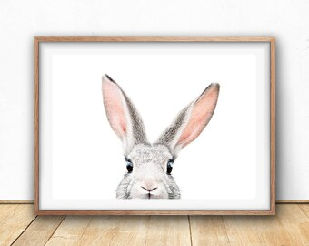 Bunny Print Download, Printable Nursery Art, Farm Animal Wall Art, Digital Download, Rabbit Ears, Animal Photography, Poster Download