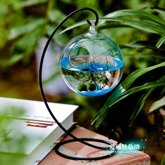 Mini Aquarium Kit 2 Moss Balls Glass Pebbles Little Fan