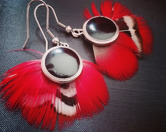 Red parrot feather earrings.