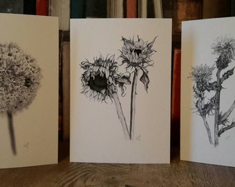 Beautiful and original A5 all occassion cards - 2 pack. Three designs to choose from with more added all the time!