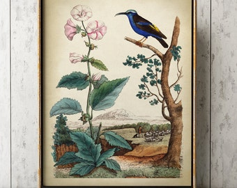 Blue Bird and flower print, bird and country print, bird print, bird poster,