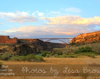 Perrine Bridge and the Snake River Canyon Picture