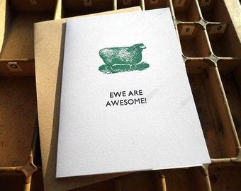 Letterpress greetings card - EWE ARE AWESOME! sheep