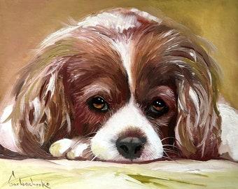 Dog art portrait Original Oil painting by Tetiana