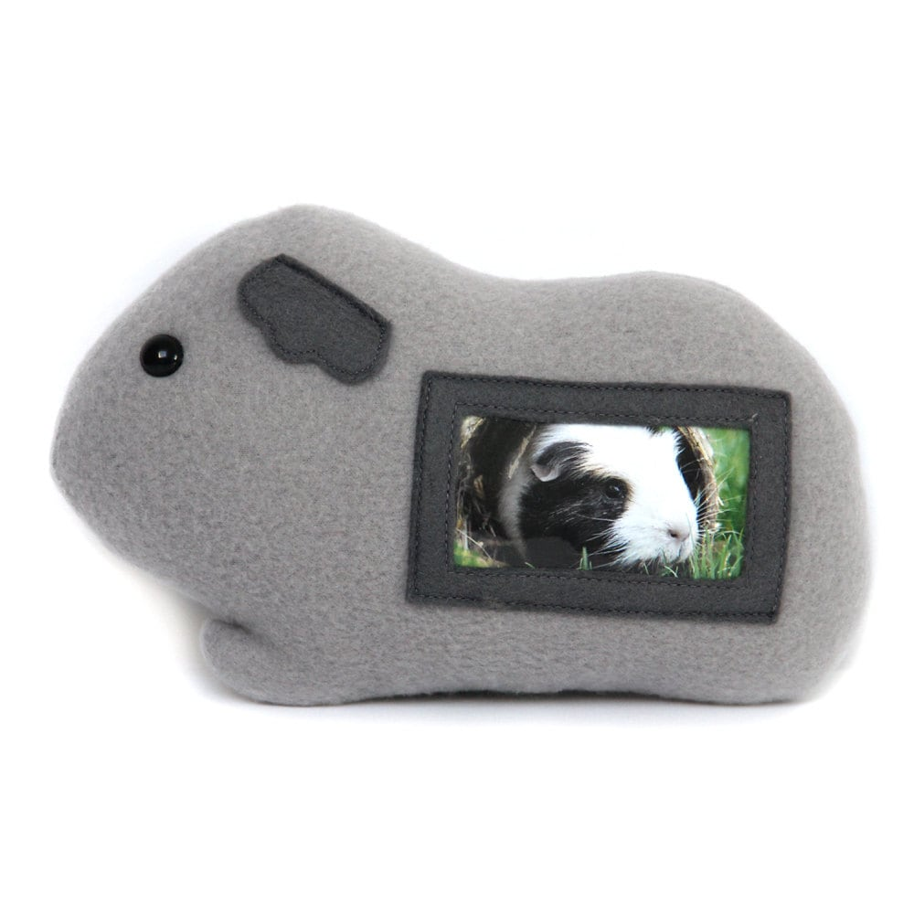 Guinea pig plush picture frame ready to ship cavy photo zoom jeuxipadfo Gallery