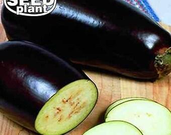 Black Beauty Eggplant Seeds - 150 SEEDS NON-GMO