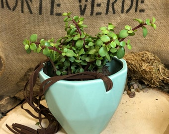 Light blue hanging pot with suede rope