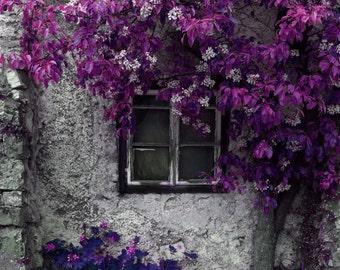 purple wall art bright purple wall art purple boho floral art purple and gray wall art purple floral wall art bright purple over bed art