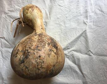 Wabi Sabi Gourd