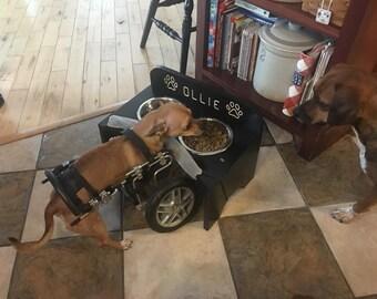 Raised pet feeder  (special needs)