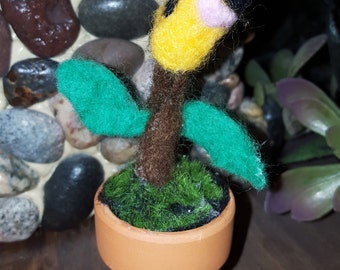 Bellsprout In a Pot