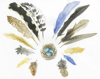 watercolor painting 8x10 archival print feather halo around a nest with blue eggs