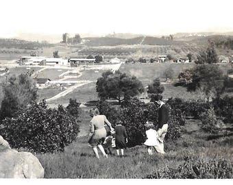 "Vintage Snapshot ""Careful Descent"" Family Back To Camera Birds-Eye View Horse Farm Found Vernacular Photo"