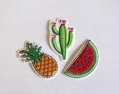 Pineapple, Cactus, Waterm...