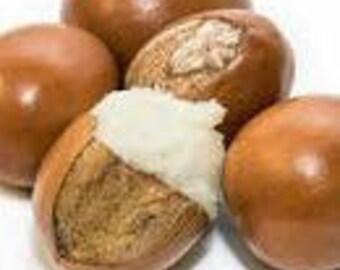 Shea Nut Oil | Butyrospermum parkii | Acne Prone Skin | Eczema | Acne | Cracked Heels | Wrinkles | Anti-Aging Beauty Oil