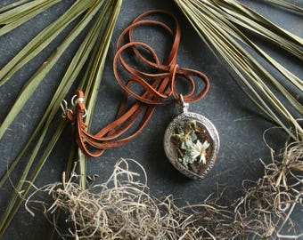 Swamp Locket with Pixi-Cup Lichen Covered Cypress Bark, Spanish Moss, Alligatorweed, & Autumn Cypress leaf from Manchac Swamp, Louisiana