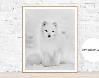 Arctic Fox Print, Fox Print, Arctic Fox Poster, Snow Print, Arctic Fox Poster, Snow Fox Print, Snow Fox Poster, Instant Download