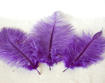 Ostrich's feather -purple