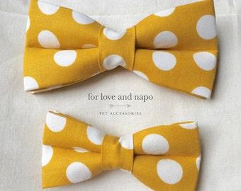 dog and cat bow tie – mustard polka dots
