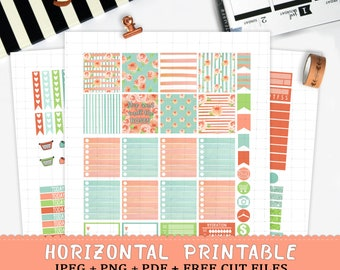 Horizontal watercolor printable planner stickers for Erin Condren LifePlannerTM cut files watercolor roses spring floral weekly sticker kit