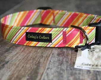 """Dog Collar, Dog Collars, Striped Dog Collar, Girl Dog Collar, Preppy Dog Collar, Female Dog Collar, Girly Dog Collar,  """"The Grace"""""""