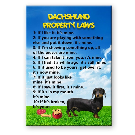 Dachshund Property Laws Fridge Magnet No 2