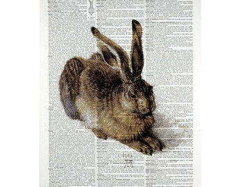 Durer Rabbit  Print on a Vintage Dictionary Page