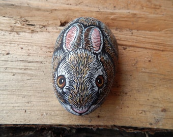 Cottontail bunny art, Cottontail rabbit painting, Bunny painted rock art