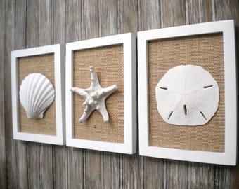 Cottage Chic Set of Beach Decor Wall Art, Wall Decor, Nautical Decor, Sea Shells Home Decor, Coastal Decor, Coastal Art, PURE WHITE