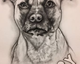 Contact me for A4 made to order graphite drawings