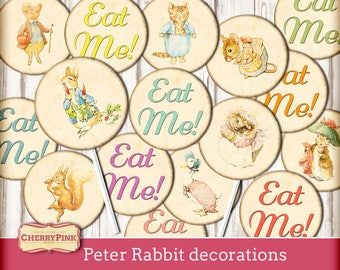 Peter Rabbit decorations, cake topper, party printable decorations, Peter Rabbit party shower, Instant Download