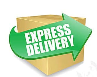 EXPRESS SHIPPING (domestic)