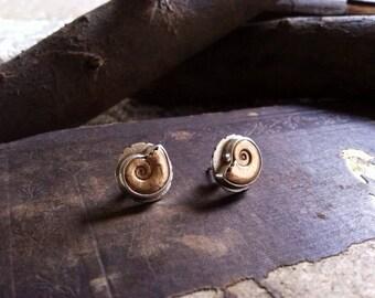 Golden Spiral Ammonite post earrings and ring : Custom Order for ABBY